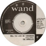 the-shirelles-wand
