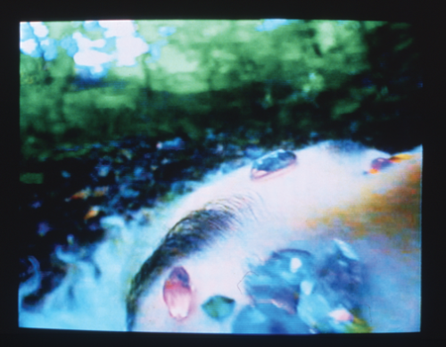Pipilotti Rist, Blauer Liebesbrief (Blue Bodily Letter), 1992/98; Audio-video installation; National Museum of Women in the Arts, Gift of Heather and Tony Podesta Collection, Washington, D.C.